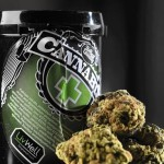 "The LA Times Reports, ""The list of ingredients on a LivWell container includes pesticides. The company says they are safe. (AAron Ontiveroz / Denver Post)"" in its 10/8/15 ""A first for the marijuana industry: A product liability lawsuit"" article."