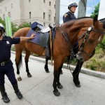 Cleveland mounted police officer Abraham Cortes leans on his horse Paco with fellow officer Michael Herrin (R) on Bas during a demonstration of police capabilities near the site of the Republican National Convention July 14, 2016. Police in Cleveland say they aim to avoid mass arrests at the protests planned for next week's Republican National Convention, but the fact that the city's courts are preparing to process up to a 1,000 people a day has some civil rights activists worried. Photo By Rick Wilking/Reuters